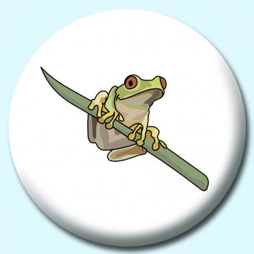 38mm Tree Frog...