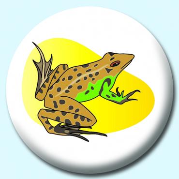 38mm Brown Frog...