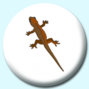 75mm Brown Gecko...
