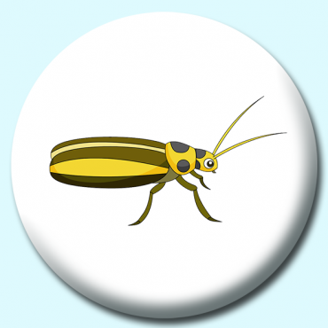 38mm Cucumber Beetle...