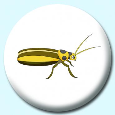 58mm Cucumber Beetle...