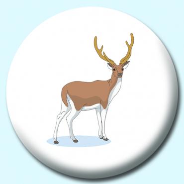 75mm Deer Color...