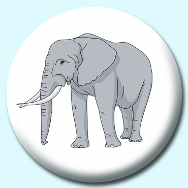 25mm Elephant ...