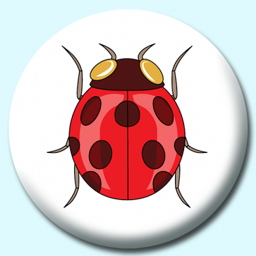 58mm Ladybug Insects...