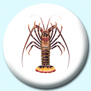 58mm Lobster Button...