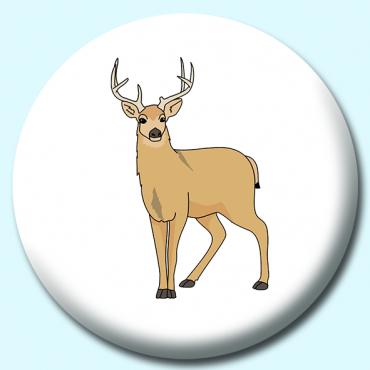 38mm Mule Deer...