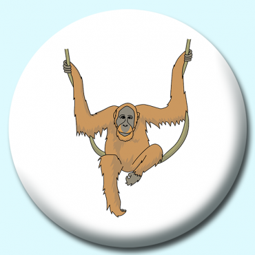 58mm Orangutan Hanging...