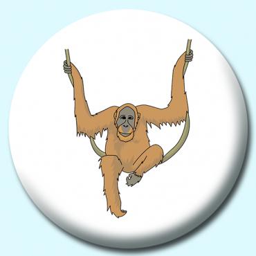 75mm Orangutan Hanging...