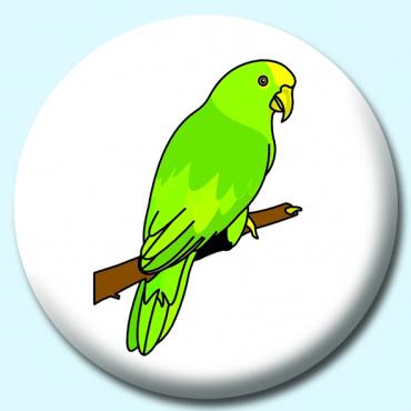 38mm Parrot ...