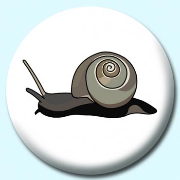 58mm Snail Button...