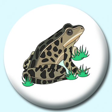 58mm Toad Button...